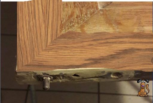 teindre une réparation en mastic sur bois 200308085510327905