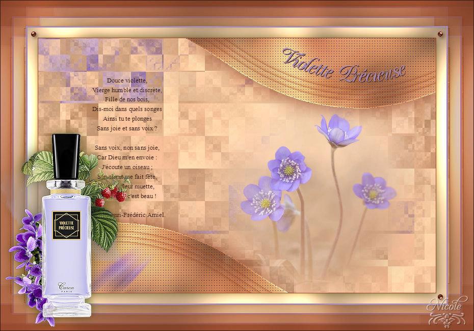 Violette Précieuse(Psp) 200316100243269394