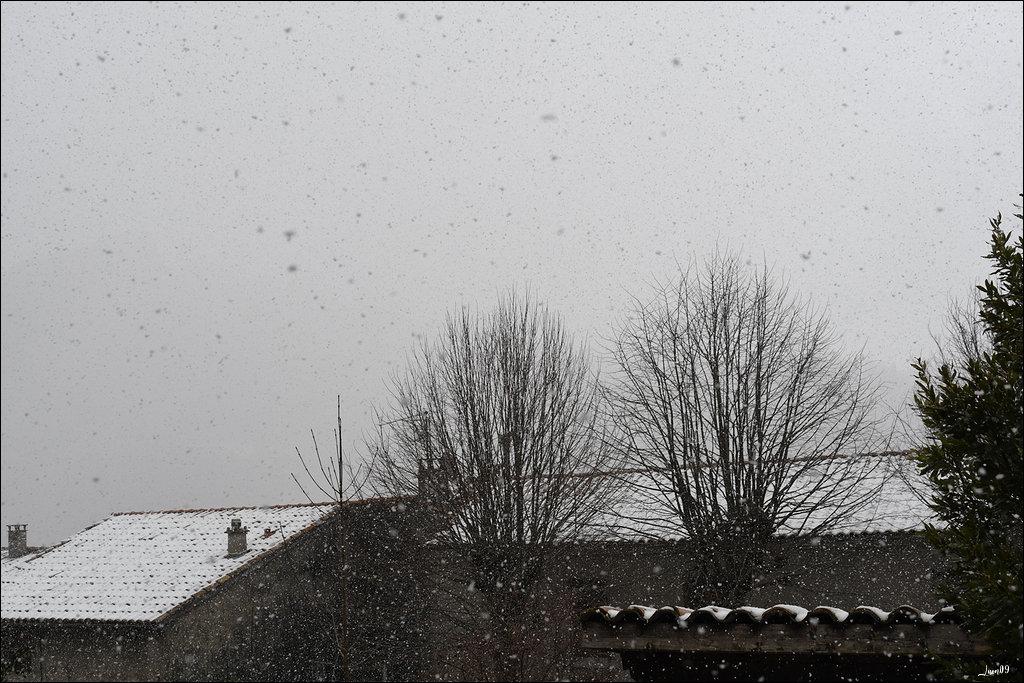 Le printemps a disparu dans Actualité locale 200326044633307960