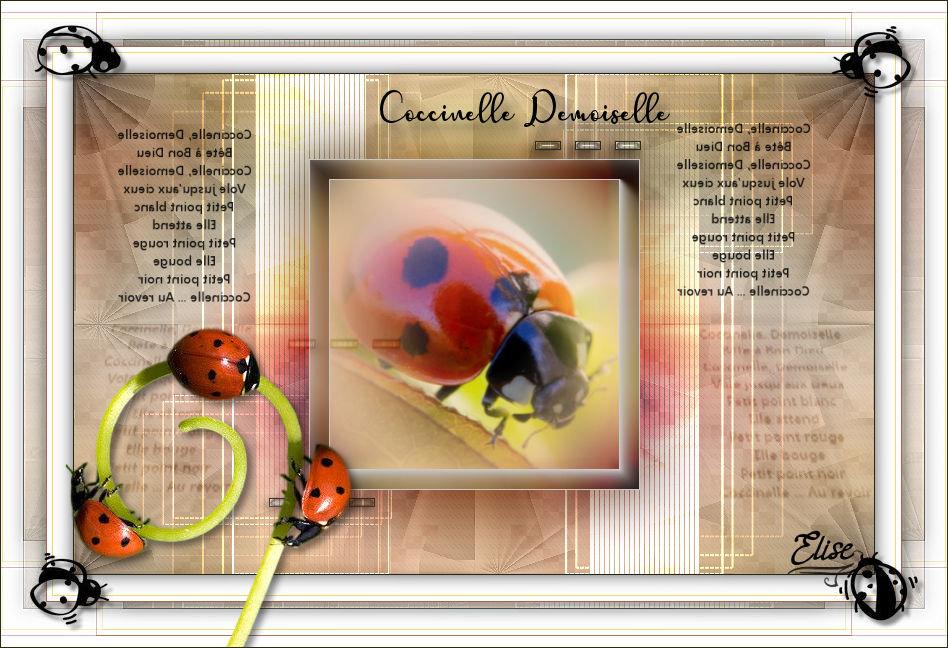 Coccinelle, Demoiselle(Psp) 200408054400529215