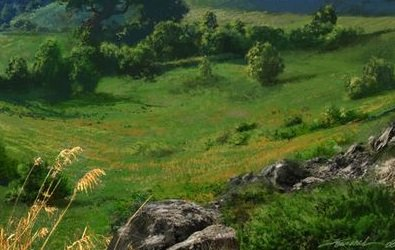 Comté de Gorgone