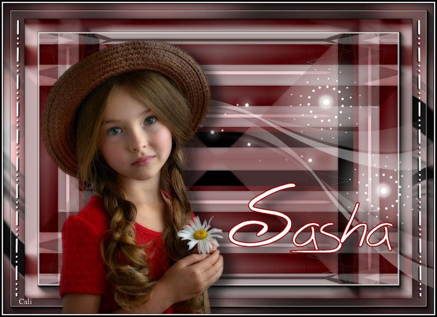 Sasha perso