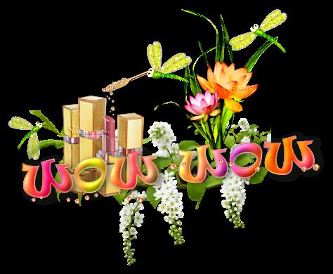 Le muguet porte-bonheur   ( psp) 200427065529244241