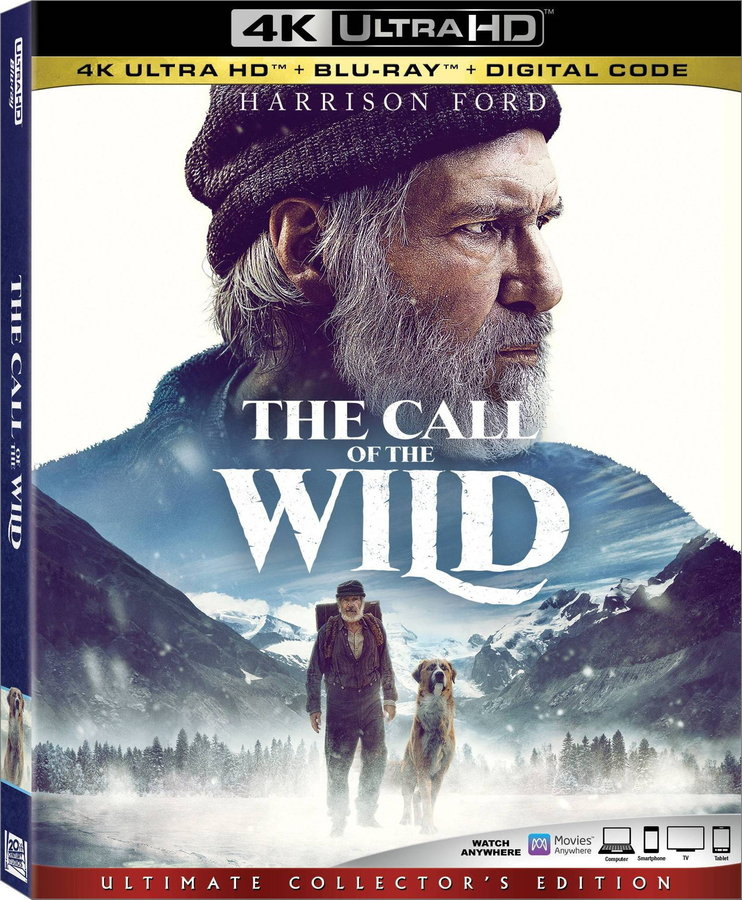 The Call of the Wild (2020) poster image