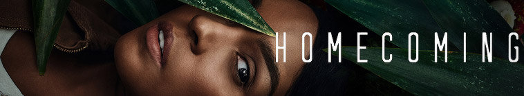 Poster for Homecoming