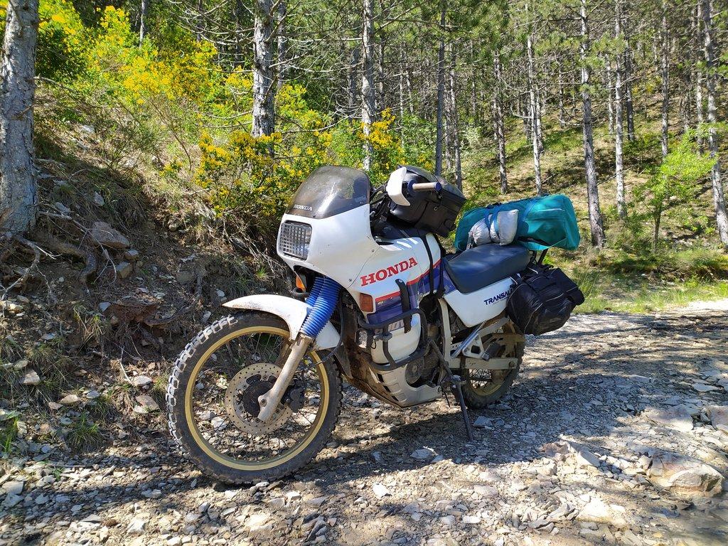 Honda 600 XR - Page 7 200525105030274919