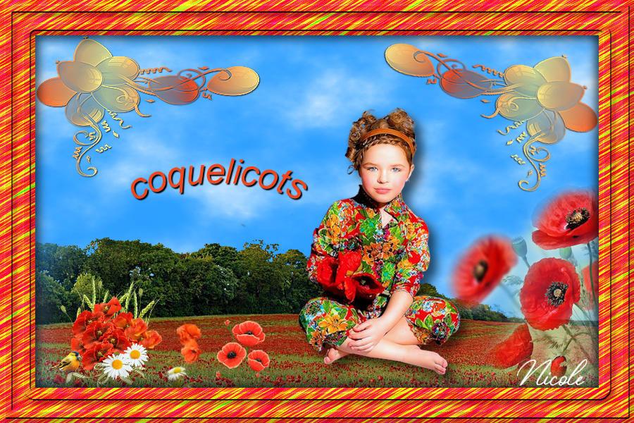 Coquelicots   ( psp) 20052511033762238