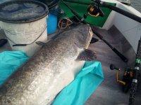 WE pêche avec mon ami Romu Mini_200607021208137546