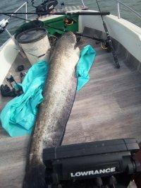 WE pêche avec mon ami Romu Mini_200607021341204524