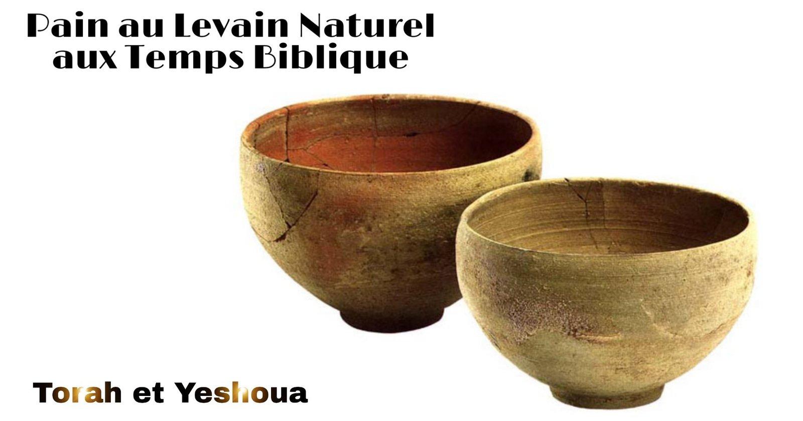 1 - Pain au Levain Naturel aux Temps Biblique 200609071916517473