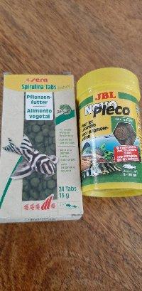 160L Biotope amazonien - Nouvelle espèce !! - Page 4 Mini_200610093236259533