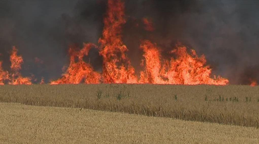 Plan de lutte contre les feux de chaumes 20061306385440614