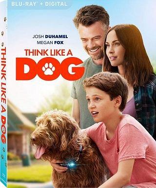 Think Like a Dog poster image