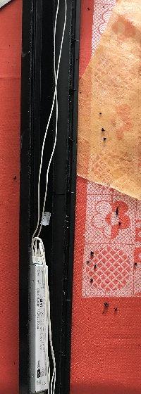 bricolage de ma rampe de Juwel 180L Mini_200614064550227162