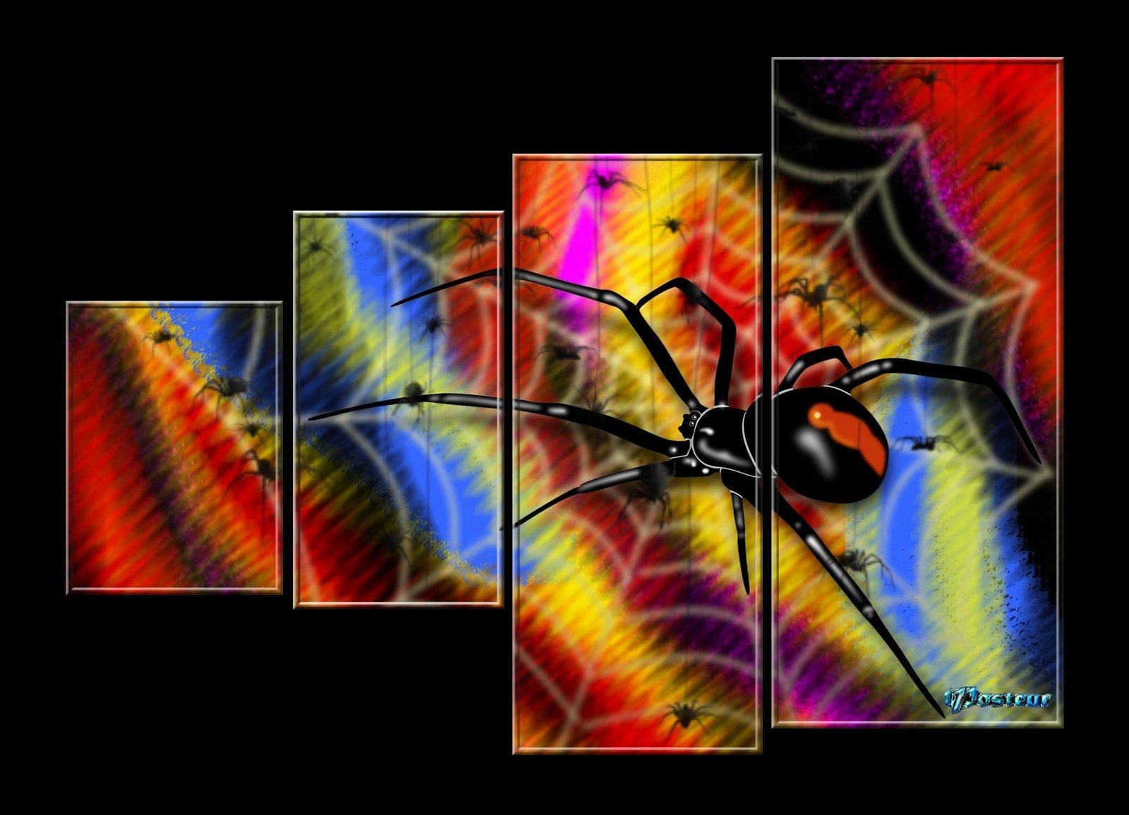 L'araignée 200616113250406950