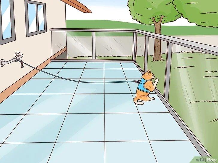 v4-728px-Make-a-Balcony-Safe-for-Cats-Step-9-Version-2