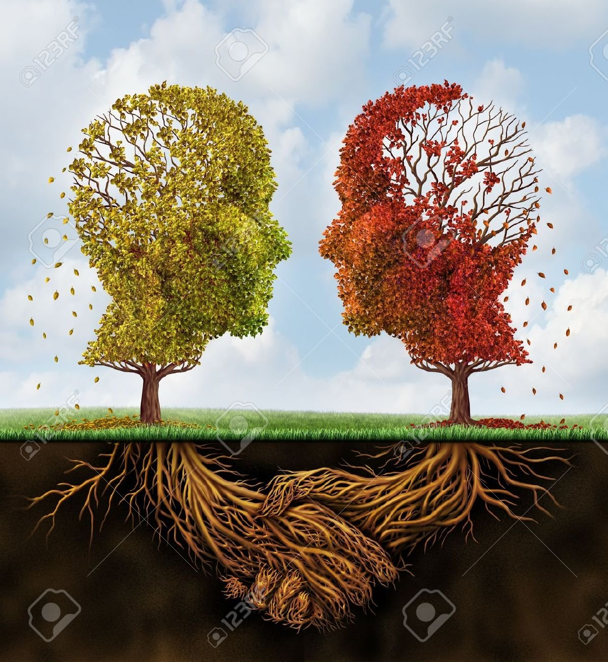 20948484-concept-d-entreprise-de-l-équipe-décoloration-avec-deux-arbres-d-automne-perdre-les-feuilles-en