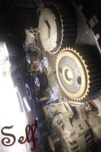 206 S16, 206 SW GTI et 307 2.0 Féline pour moi, C4 Collection pour elle - Page 22 Mini_200816110731797864