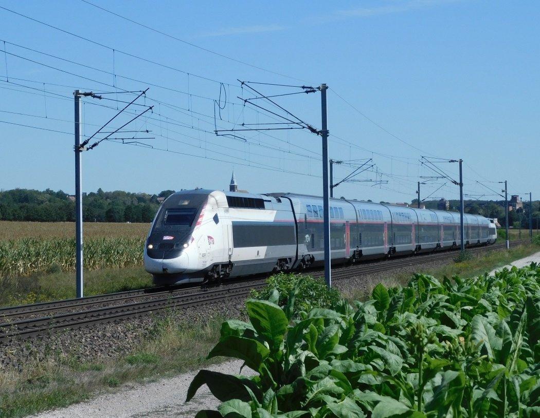 DSCN0102