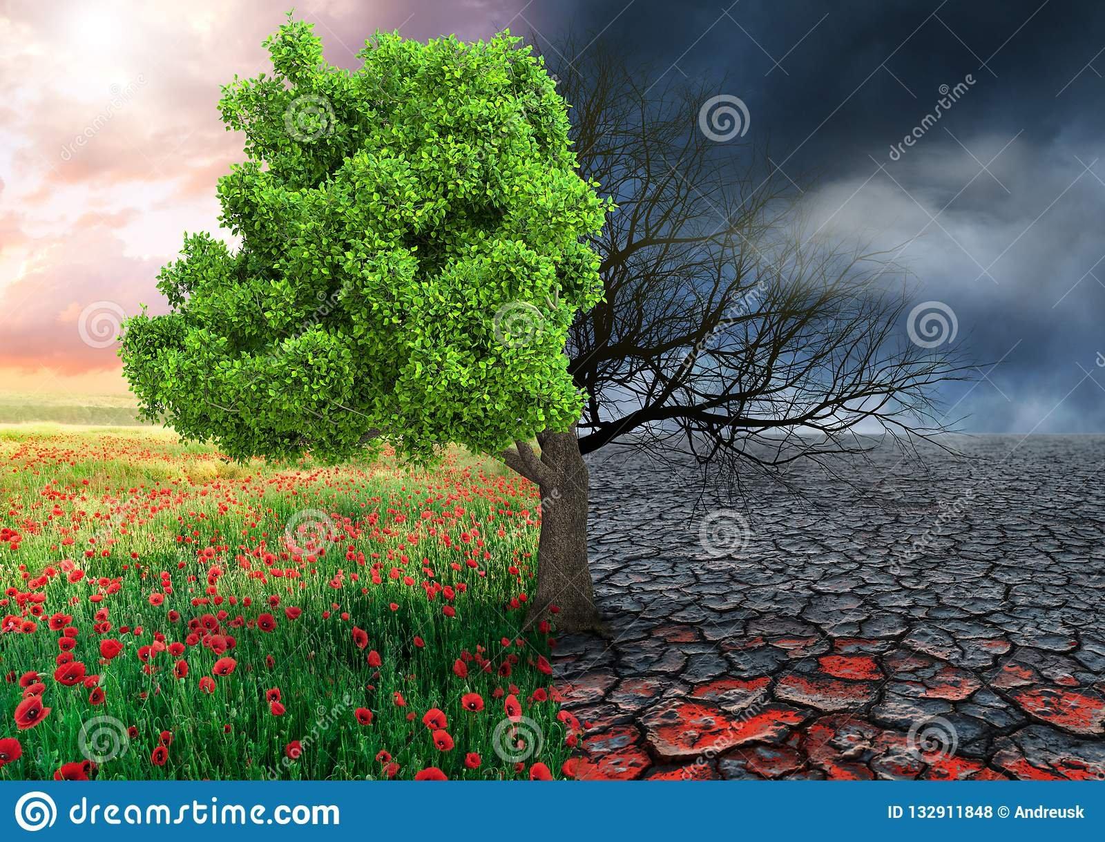 concept-écologique-avec-l-arbre-et-le-paysage-changeant-de-climat-132911848