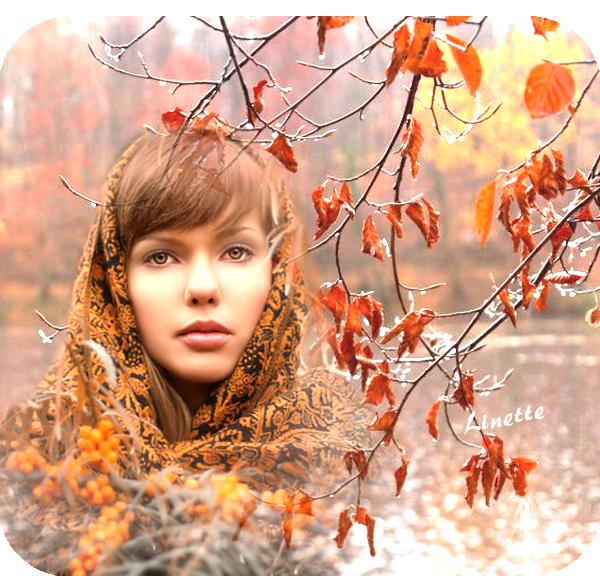 56 automne