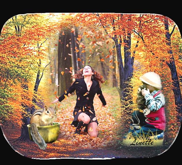 42 automne