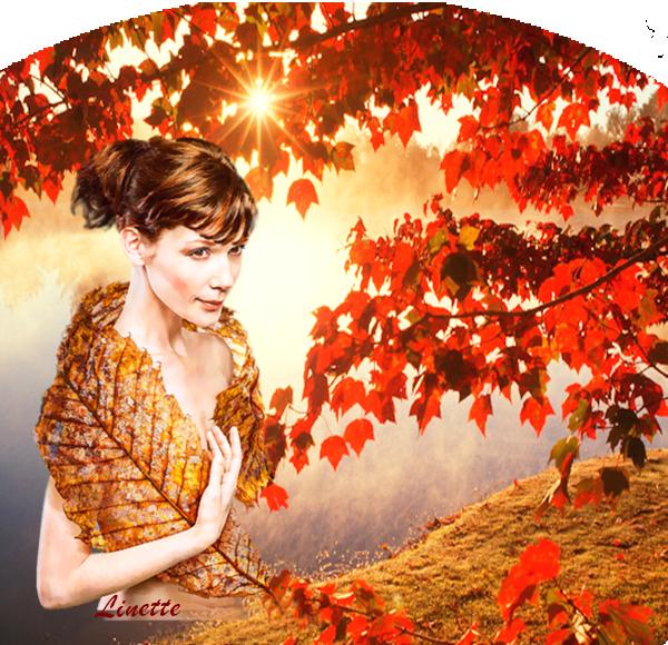 94 automne