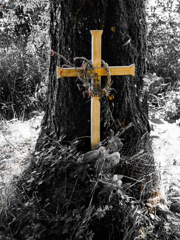 Petite croix (FZ82) 200913070752471234