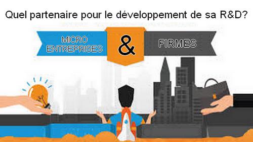 Partenariat R&D : firmes et micro entreprises
