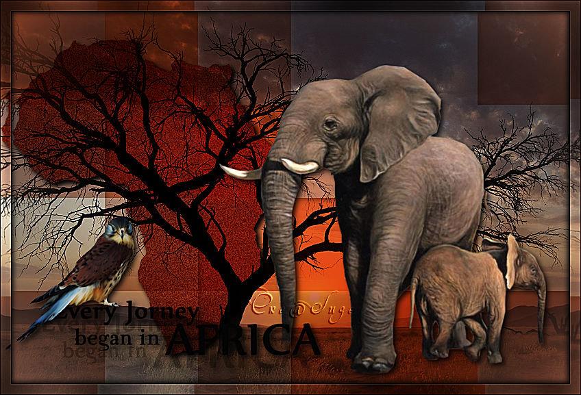 Africa 201101011036780359