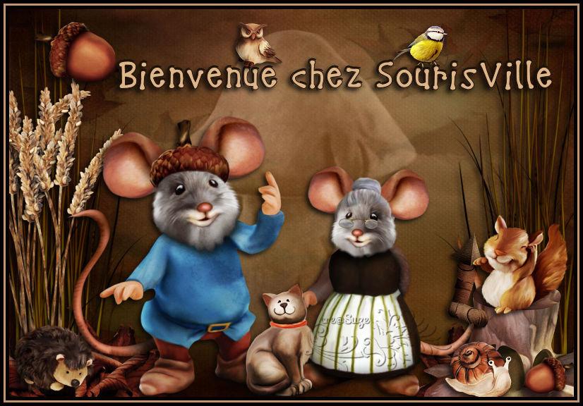 Bienvenue chez SourisVille - Page 4 201103011209630490