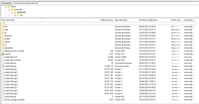 multicraft nouveau serveur - sftproot@193.70.80.134 - FileZilla_2