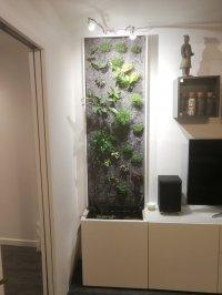 Projet mur végétal: aide choix du concept et validation technique Mini_201113102018476875