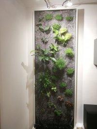 Projet mur végétal: aide choix du concept et validation technique Mini_201113102019278169