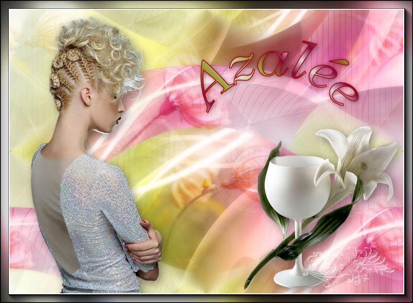 Azalée - Page 2 201115020828380548