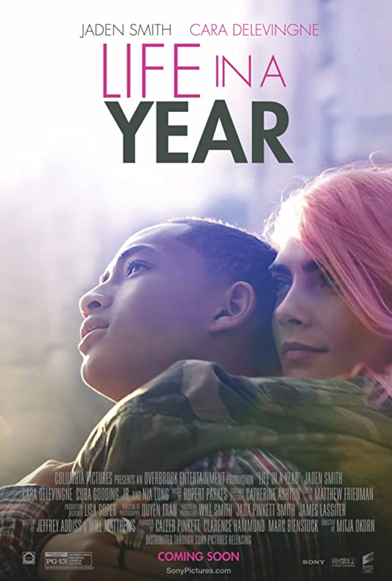 Life in a Year poster image