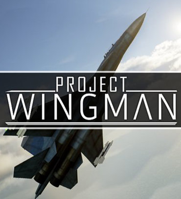 Poster for Project Wingman