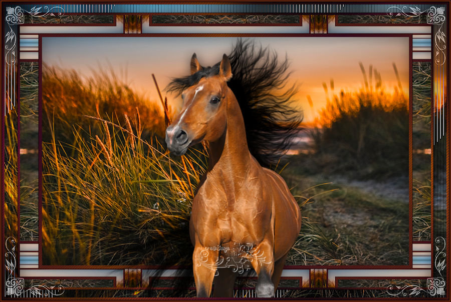 Horse - Page 3 201206015055270376