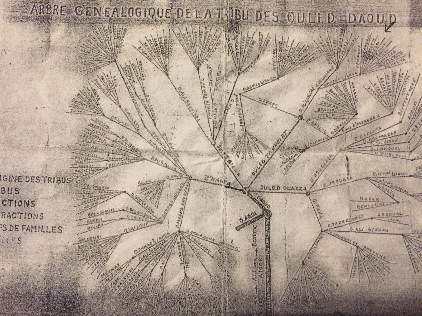 La Tribu des Oulad Daoud (Aurès) - 1ère partie -  dans Attributs d'Algérienneté 201209082508812500