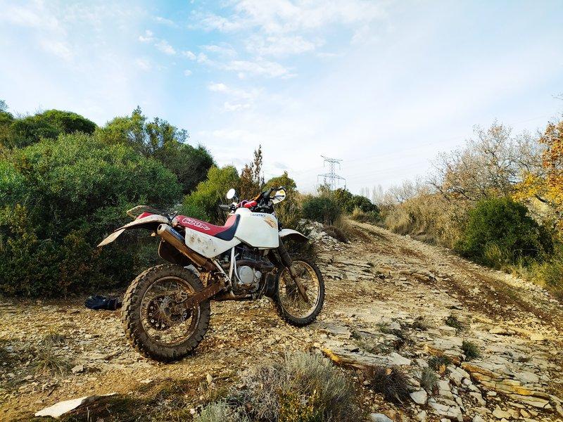 Honda 600 XR - Page 11 201211093620876608