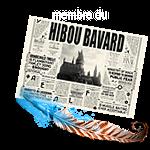 [PV RECHERCHÉS]  Harry Shum Jr (Serdaigle) / Millie Bobby Brown (Gryffondor) / Lucas Till (Ministère Français) Mini_210103084016716719