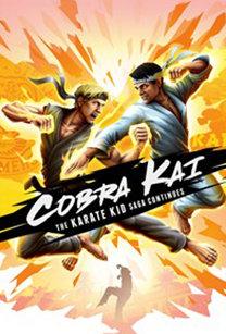 Poster for Cobra Kai: The Karate Kid Saga Continues
