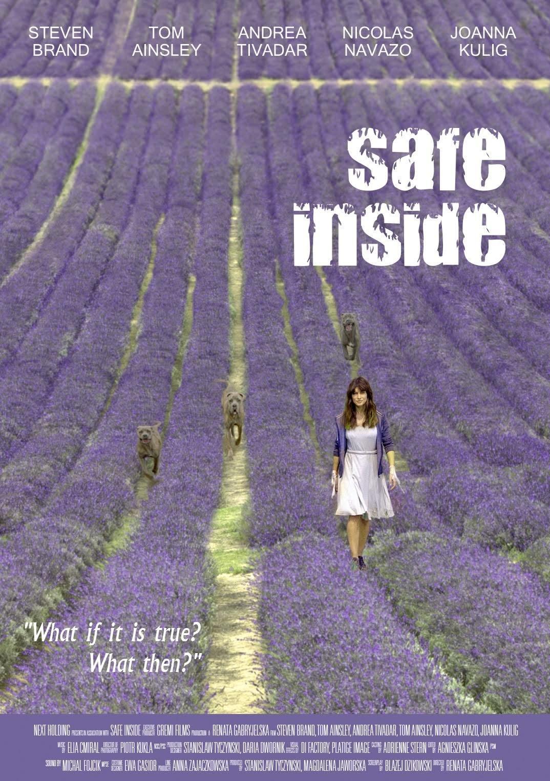 Safe Inside poster image