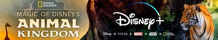 Poster for Magic of Disneys Animal Kingdom