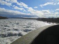 crue du Rhône a Caderousse du 07.02 Mini_210207050842683288