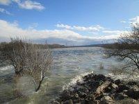 crue du Rhône a Caderousse du 07.02 Mini_210207051011280106