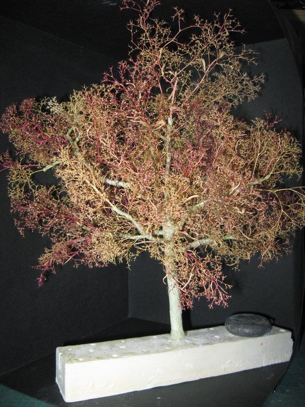 fabriquer des arbres pour dioramas au 1/35 au 1/48 ou au 1/72 (fin du montage) - Page 2 210219011013851384