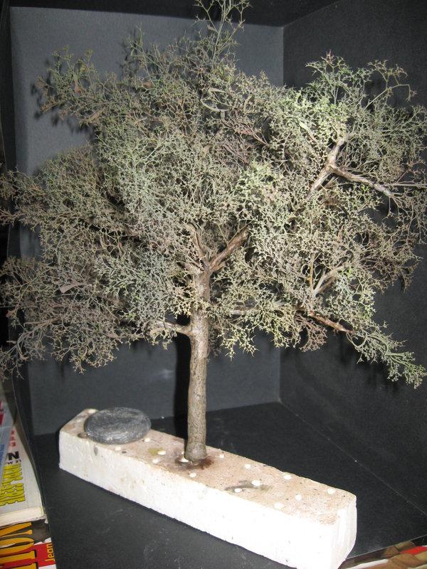 fabriquer des arbres pour dioramas au 1/35 au 1/48 ou au 1/72 (fin du montage) - Page 2 210219011234800305