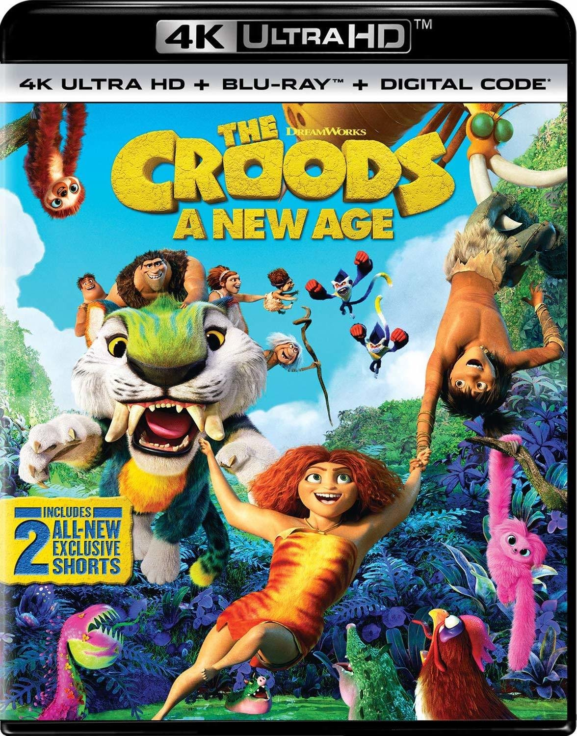 The Croods: A New Age poster image