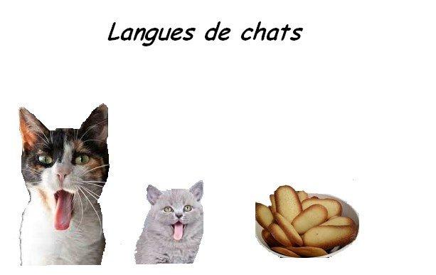 langues de chats